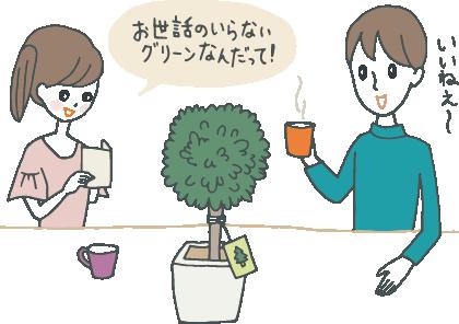 トピアリー型のブリザーブドグリーンを眺める夫婦。メッセージカードを片手に「お世話のいらないグリーンなんだって!」「いいいねえ」など話している